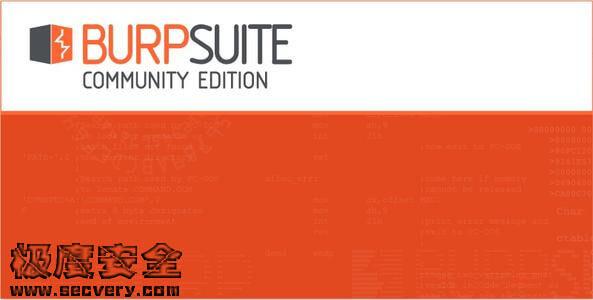BurpSuite实战指南(中文高清完整版)-极安网