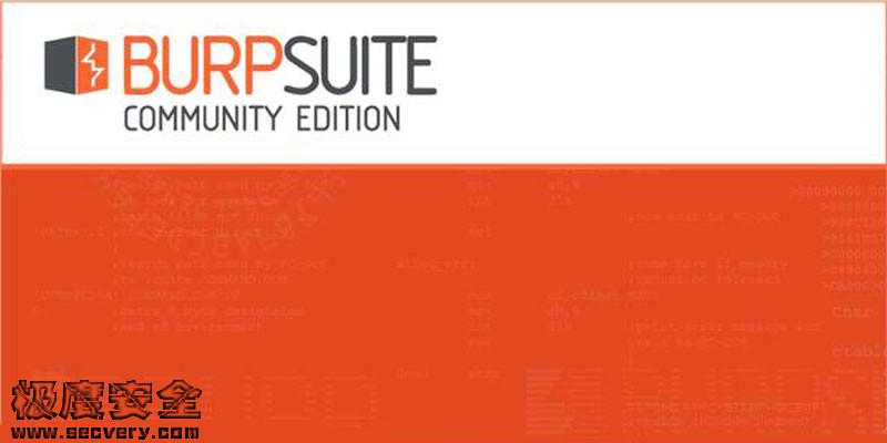 BurpSuite Pro 2020.9.2 渗透测试神器破解版下载-极安网