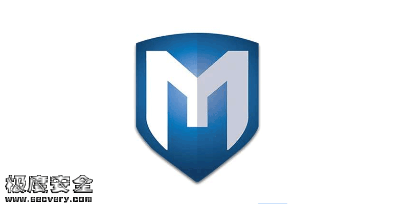 Metasploit内网使用的三种方法-极安网