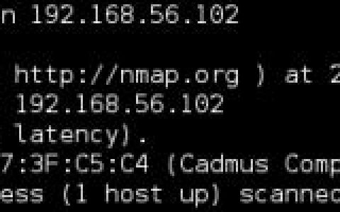 Kali Linux Web 渗透测试秘籍 第二章:信息收集及网络侦察