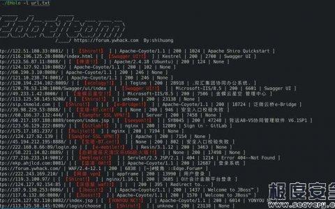 EHole(棱洞)红队重点攻击系统指纹探测工具