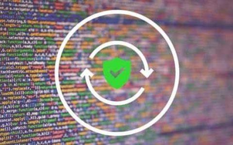 Web漏洞扫描验证工具Vulmap